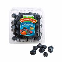 blueberries-la-florencia