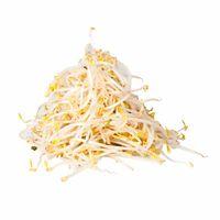 frejol-chino-bolsa-1kg