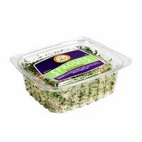 germinado-age-sprouts-mix-bandeja-100gr