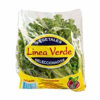 lechuga-linea-verde-crespa-bolsa-300gr