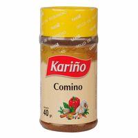 comino-karino-molido-frasco-40gr