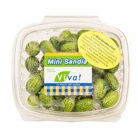 sandia-viva-mini